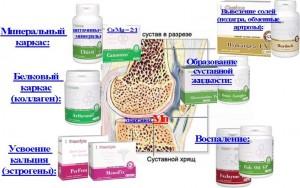 Средства для костно-суставной системы