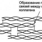 Поперечная сшивка - первый элемент прочности коллагена