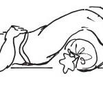 Валик под коленные сгибы расслабляет подвздошно-поясничную мышцу