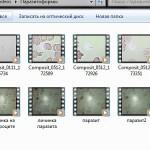 Видеогалерея. Образец страницы с файлами. Продолжение