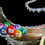 Спектральный анализ волос на минералы и другие химические элементы