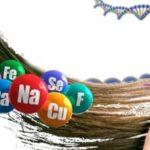 Спектральный анализ волос на микроэлементы по методу профессора Скального