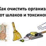 Системная очистка организма