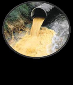detoxikaciya organizma