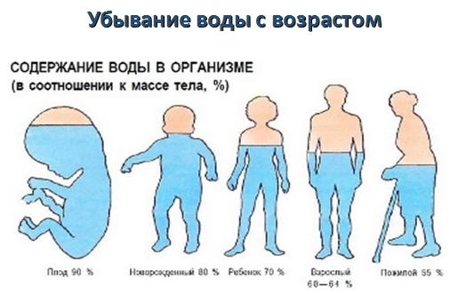 procent-vody-v organizme-s-vozrastom