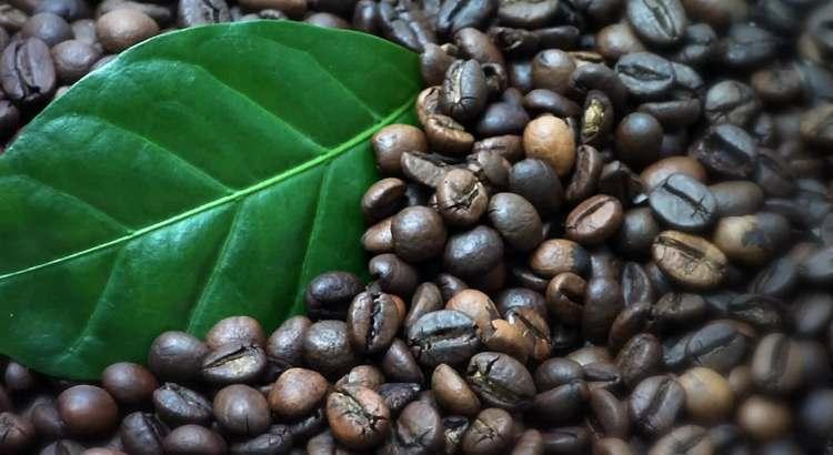 нашумевшее видео о кофе